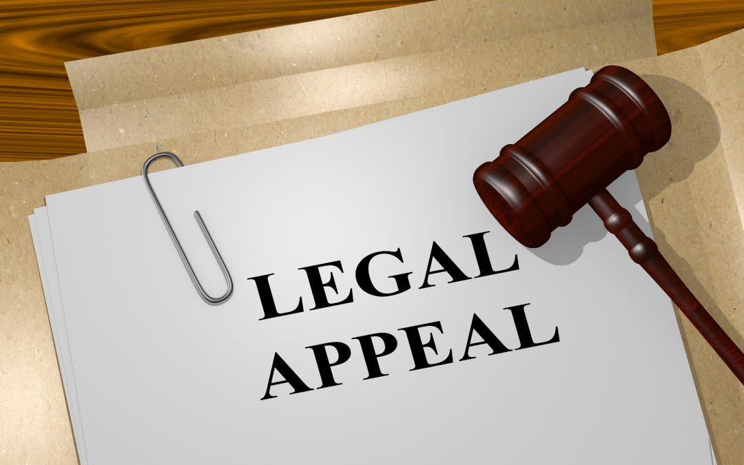 What is an Appeal in a Court of Law?